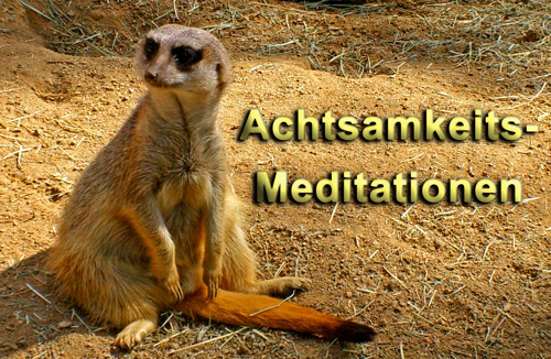 Achtsamkeitsmeditation zum Download als MP3