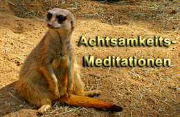 Achtsamkeitsmeditation zum MP3 - Download